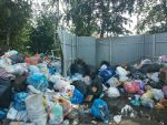 Подробнее: Собственников домовладений просят срочно перезаключить договора с мусоровывозящей организацией